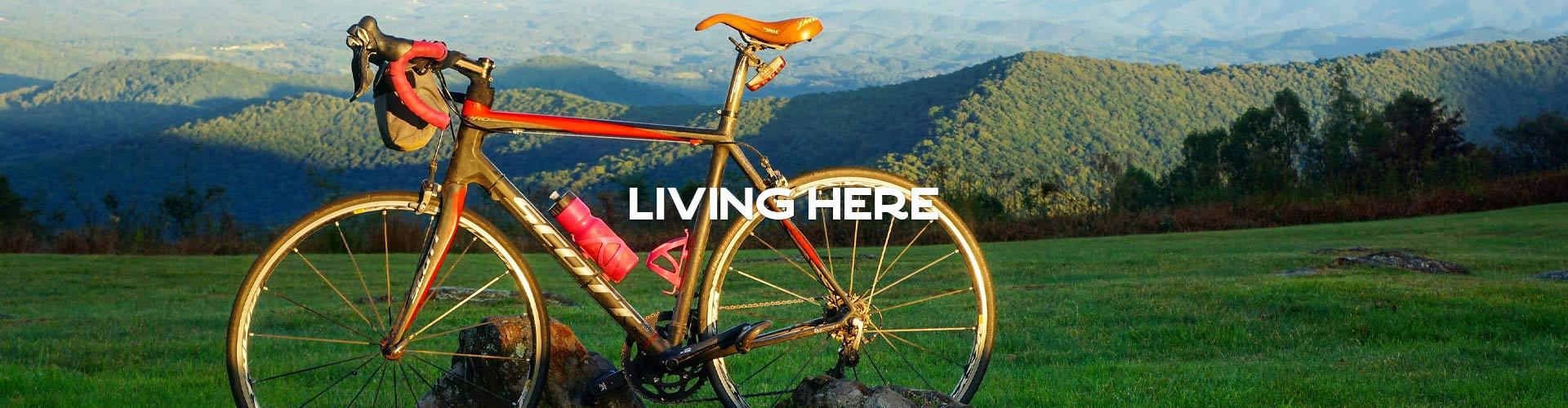 living-here-header